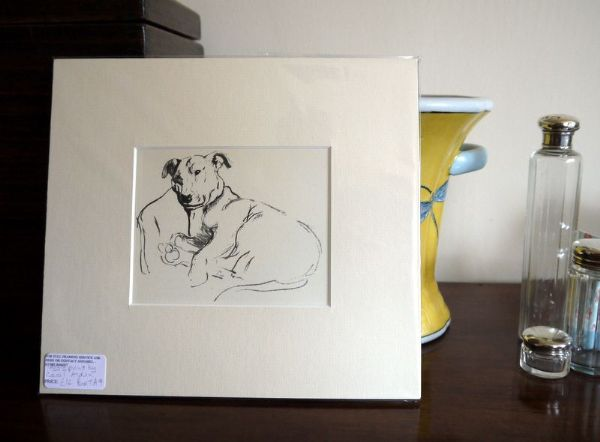Bull Terrier - head resting on a chair - BulT A9 -   1930's print by Cecil Aldin